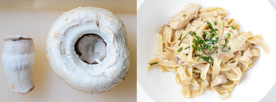 Pasta with chicken, mushrooms and white wine