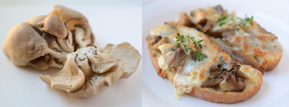Toast with Mushrooms, Mozzarella & Thyme